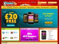 House of Bingo Home Page