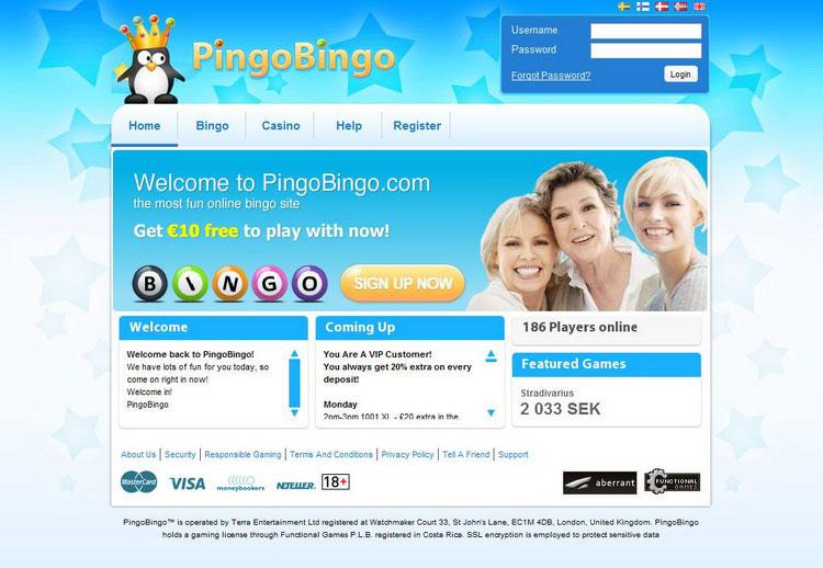 Pingobingo Review Bingo Review